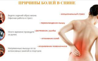 Главные причины боли в левом боку со стороны спины