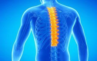 Первые симптомы и методы лечения остеохондроза грудного отдела позвоночника