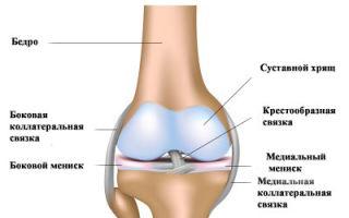 Что делать при ушибе колена