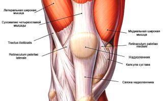 Растяжение коленных связок и его лечение