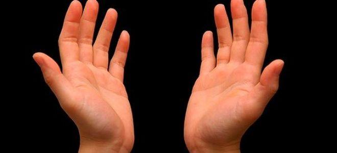 Что такое тремор рук: первые признаки заболевания, лечение народным средствами