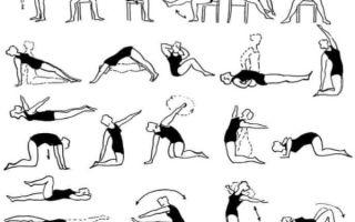 Комплекс физических упражнений для спины при сколиозе