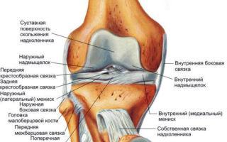 Почему может болеть колено при ходьбе