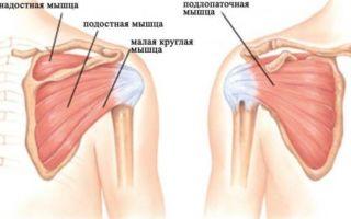Почему возникает боль в плечевом суставе и ее лечение