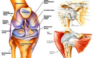 Как укрепить суставы и связки