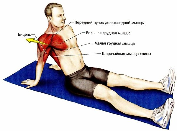 растяжка сухожилий плеча