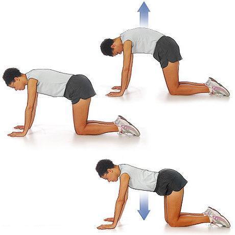 упражнение при грудном остеохондрозе