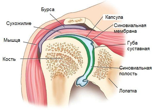 артрит коленного сустава санаторий башкирия официальный сайт