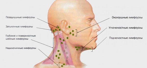 Защита от боли в шее