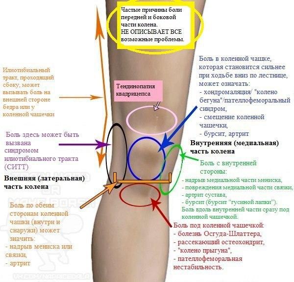 Боли в коленном суставе при ходьбе по лестнице рецепт мази для суставов скороход