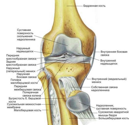 Болит колено при ходьбе вниз тутор на коленный сустав цена