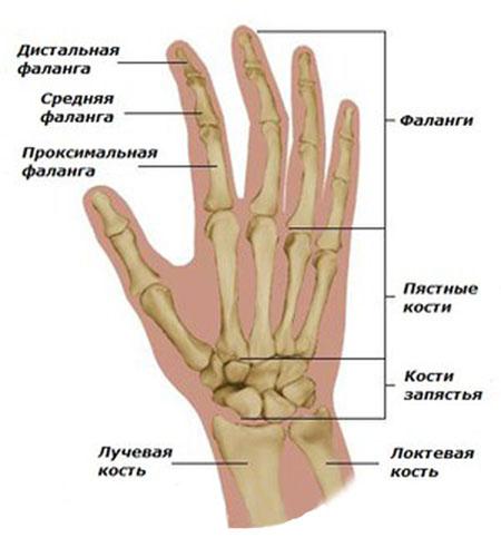 Болят суставы пальцев рук при беременности: причины боли в кистях
