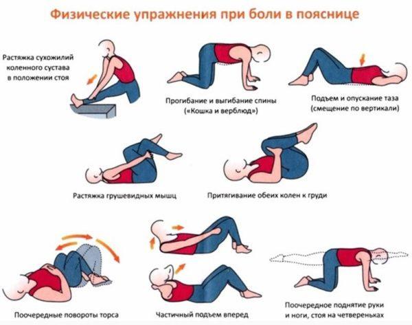 Упражнения и гимнастика для крестцового отдела позвоночника при болях