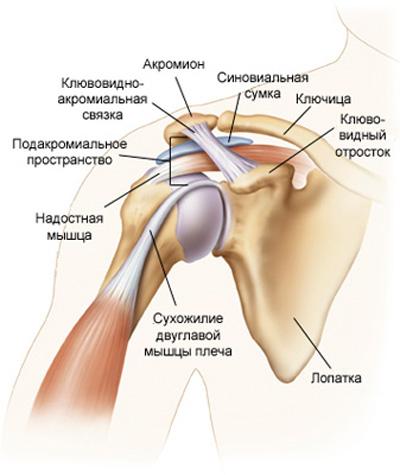 Причины артроза плечевого сустава