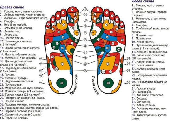 Точки стопы массаж
