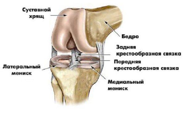 Беспокоит боль в суставах локтей и коленей