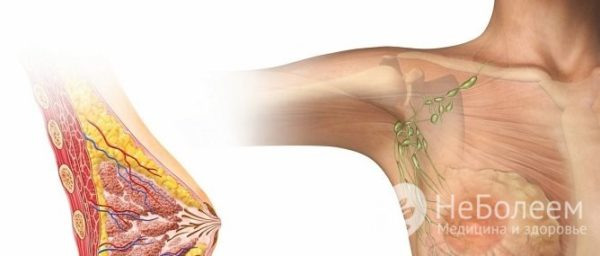 Межреберные ревматические боли в суставах иммобилизация при повреждениях коленного сустава
