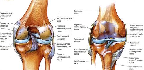 Все болезни коленного сустава упражнения при хрусте в плечевых суставах