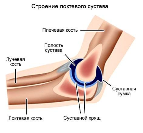 Заболевание локтевого сустава его причины артероскопия коленного сустава