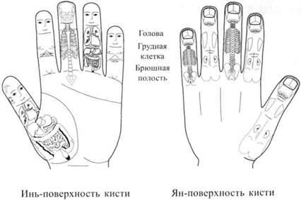 Су джок терапия лечение суставов как ревматизм суставов рук лечить