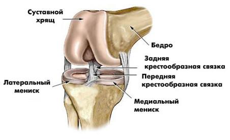 Массаж коленного сустава после травмы мениска видео лекарство от боли в суставах уколы дискус композитум